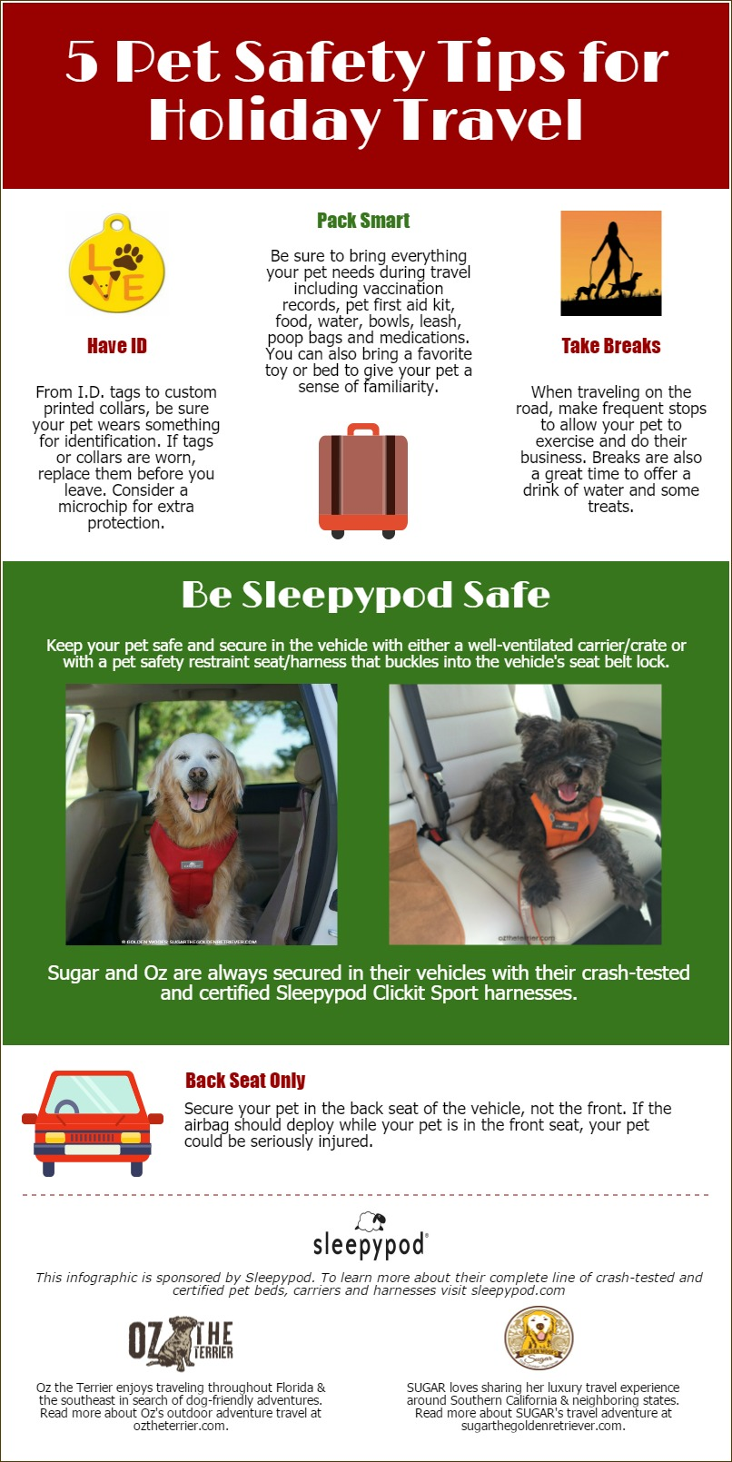 Pet Safety Tips Travel Infographic