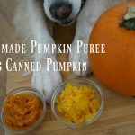 Which is better? Homemade Pumpkin Puree or Canned Pumpkin