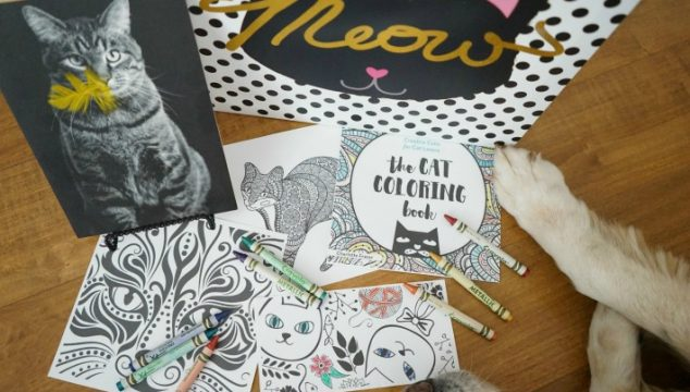 Join The Cat Coloring Book Contest and Giveaway #IColoredACat