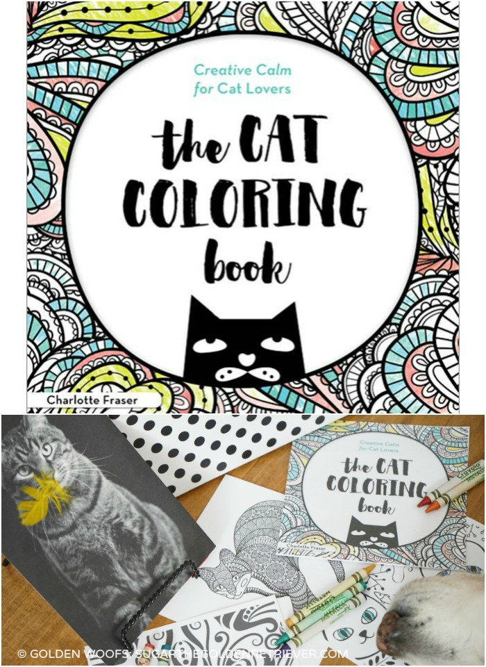 cat coloring book contest