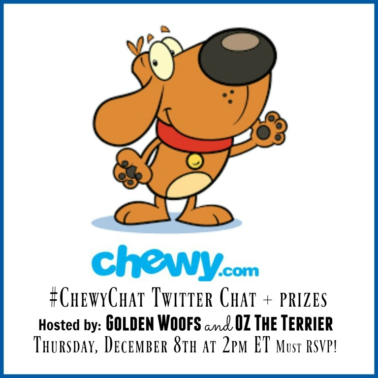 Chewy Chat