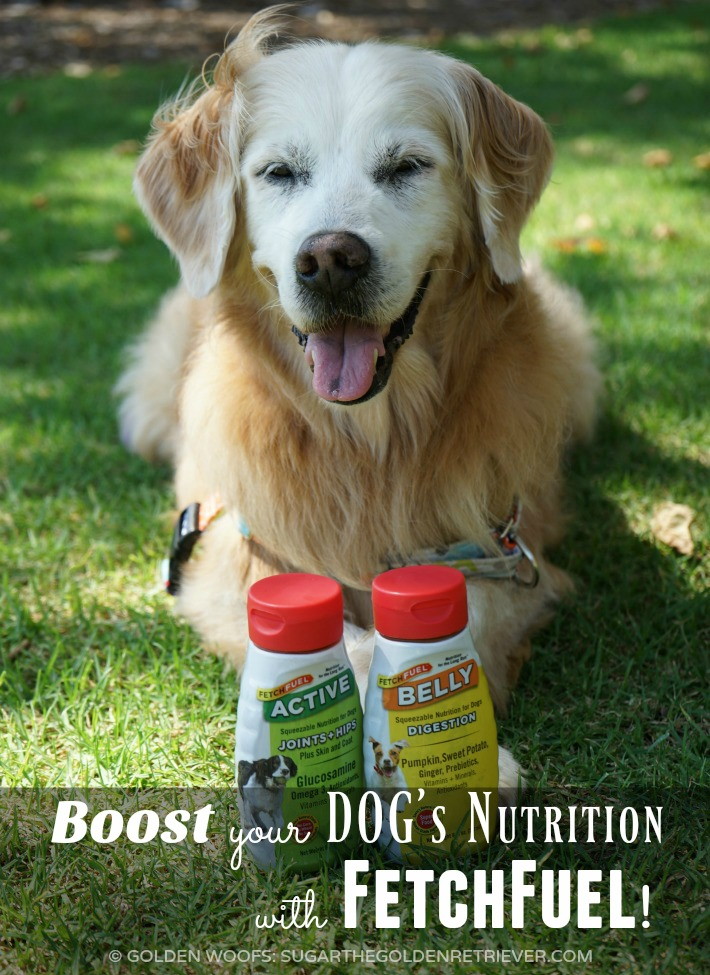 FetchFuel Dog Nutrition Supplements