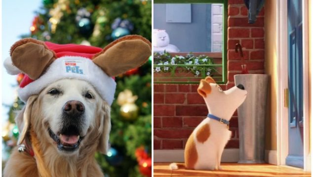 Have a Fun Family Movie Night #TheSecretLifeofPets