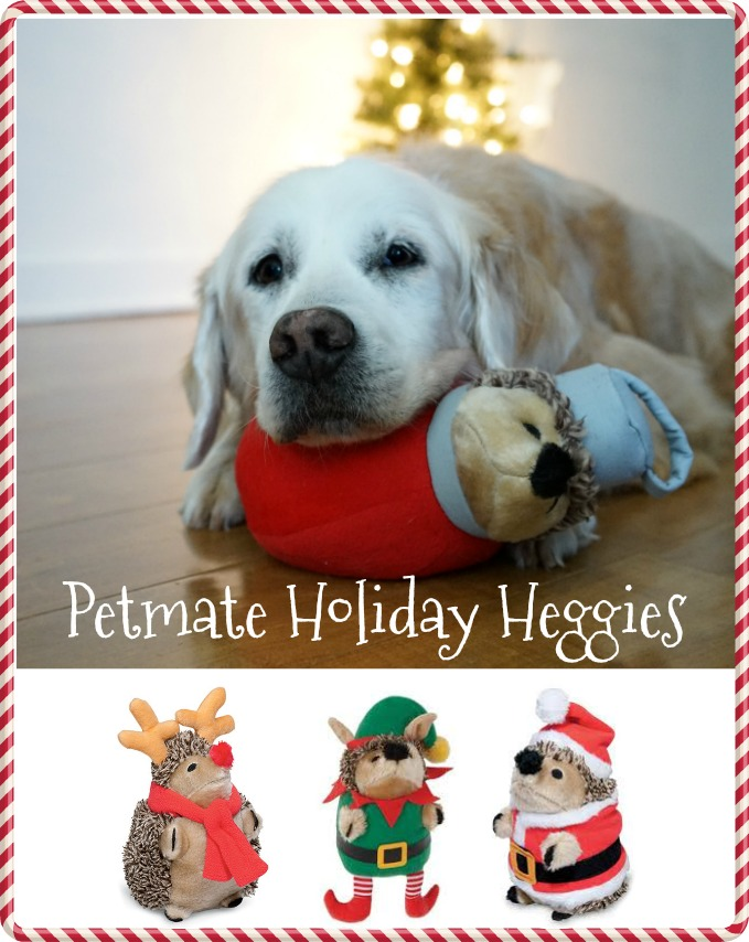 2016 Petmate Holiday Heggies