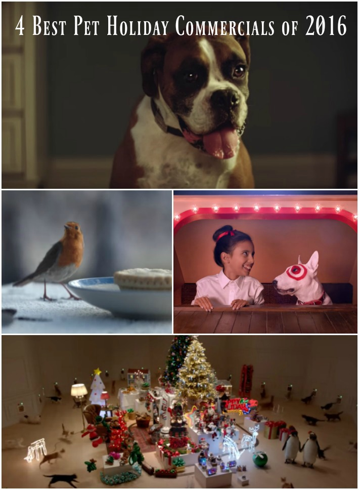 4 Best Pet Holiday Commercials of 2016