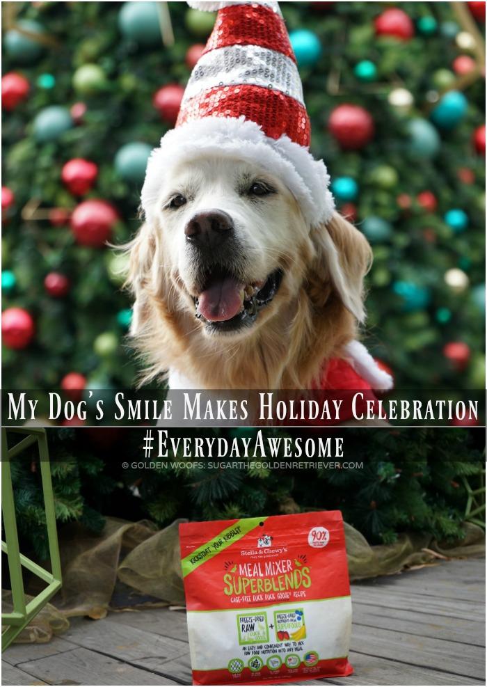 Everyday Awesome Dog's SMILE