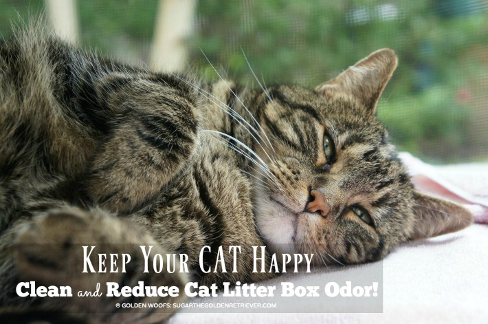 Happy CAT Odor Control Cat Litter
