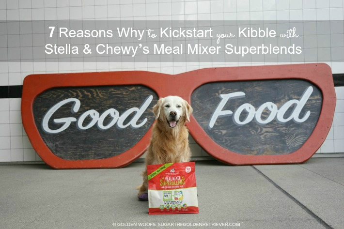 Kickstart Your KIbble Stella and Chewy's
