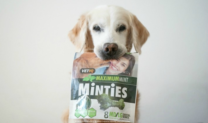Minties Dental Treats
