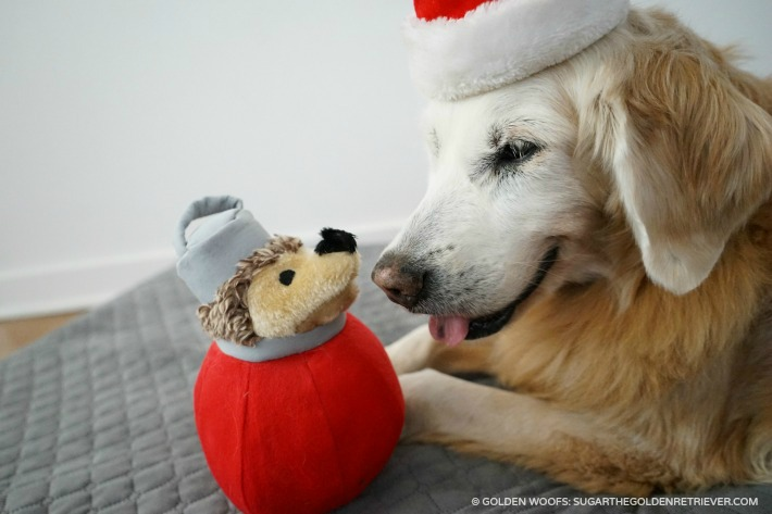 Decked Out and Festive Petmate Holiday Heggies