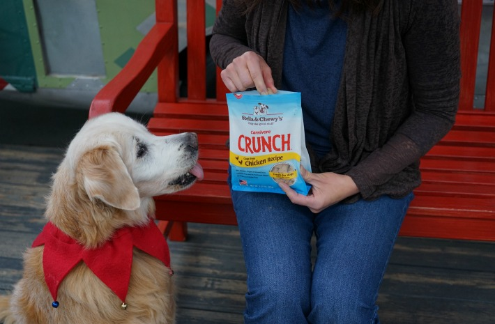 Stella and Chewy's CRUNCH
