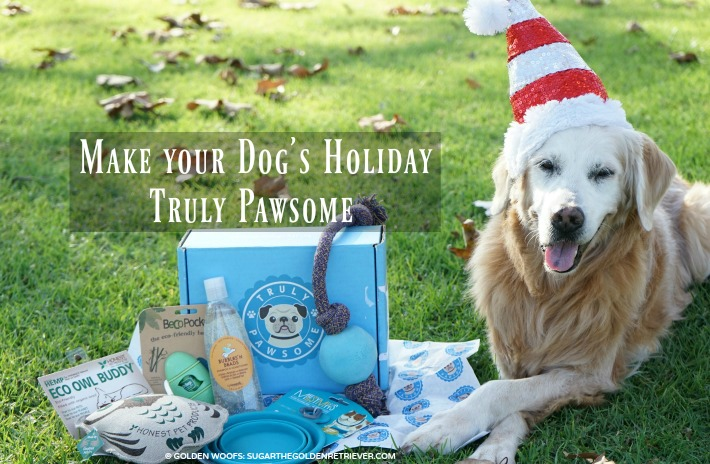 5 Ways to Make Your Dog's Holiday Truly Pawsome