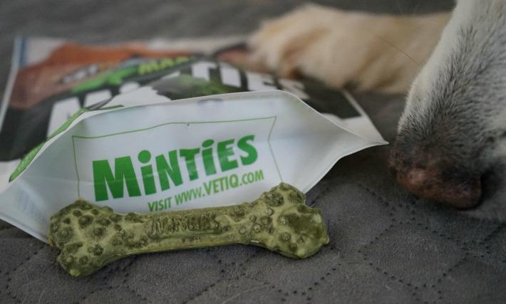 VetIq Minties dental dog treats