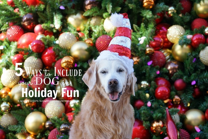 5 Ways To Include Your Dog In Holiday Fun and #BeSleepypodSafe