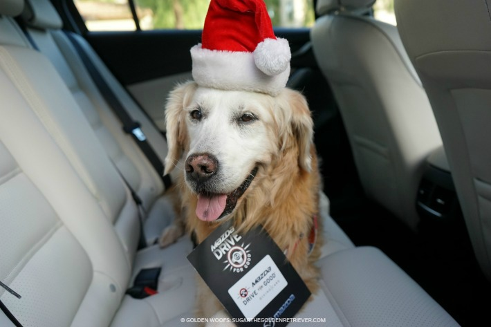Woofs Mazda Drive For Good