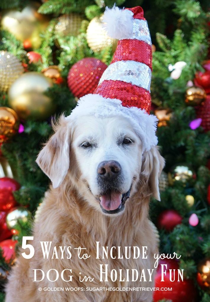 Santa Dog Holiday Fun