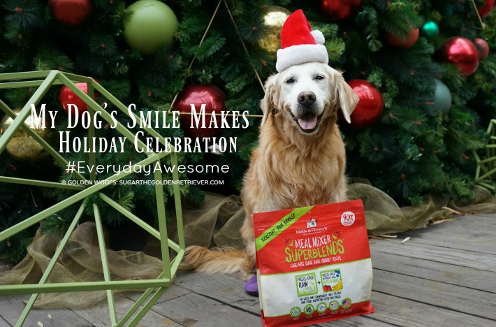 My Dog's Smile Makes Holiday Celebration #EverydayAwesome #StellaandChewys