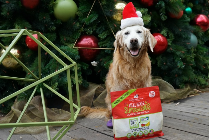 Happy Dog Fueled by Stella and Chewy's freeze dried dog food