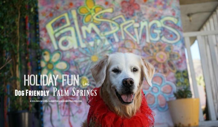 SUGAR's Holiday Fun in Dog Friendly Palm Springs