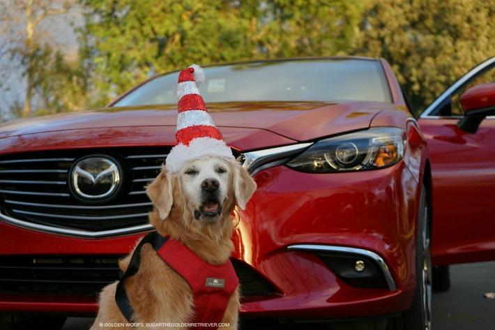 Soul Red Metallic Mazda 6