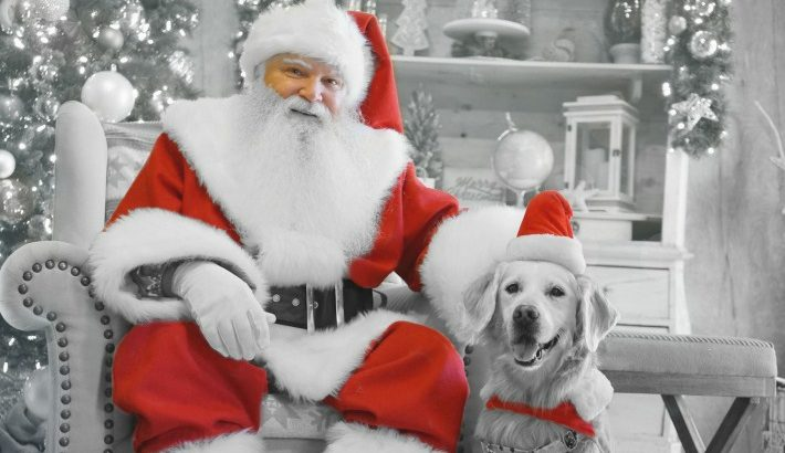 Will You Take Your Dog To Meet Santa?