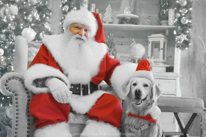 Will you take your dog to meet Santa