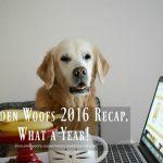Golden Woofs 2016 Recap, What a Year!