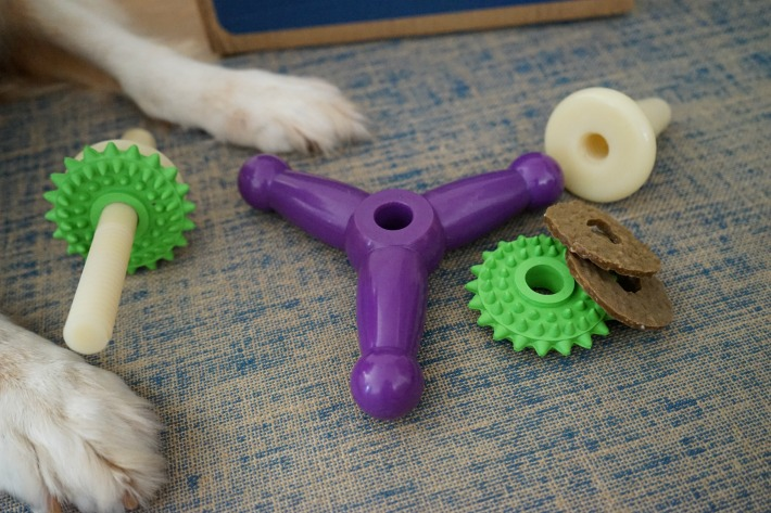 From Chewy.com PetSafe Busy Buddy Jack Dog Toy