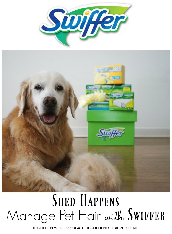 Shed Happens Manage Pet Hair with Swiffer