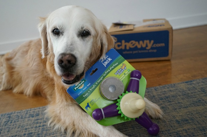 PetSafe Busy Buddy Jack Dog Toy #ChewyInflluencer