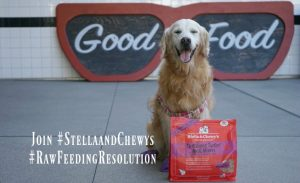 Raw Feeding Resolution Stella and Chewy's