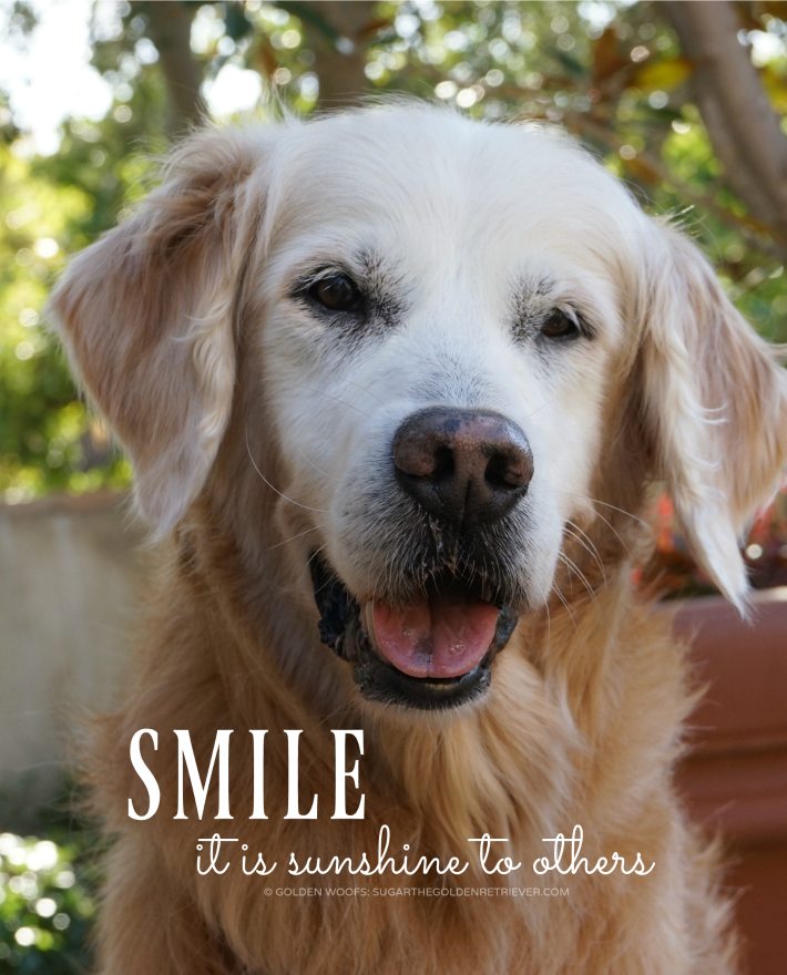 quote Smile. It is sunshine to others.