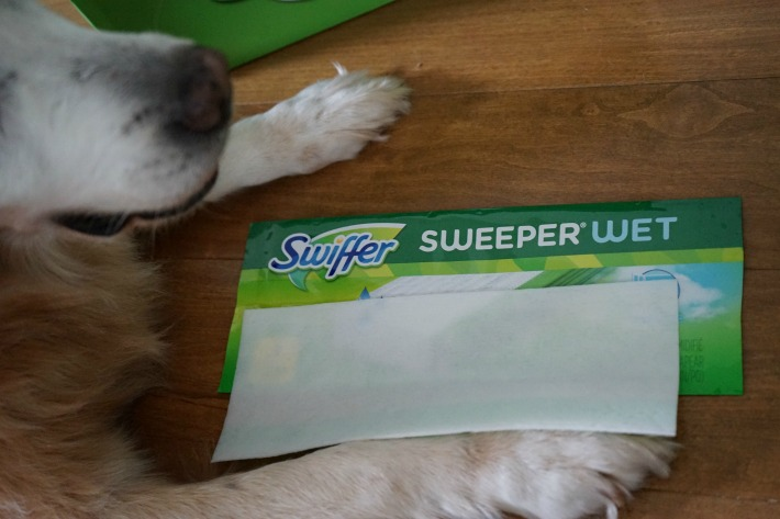 Swiffer Sweeper Wet perfect for pet hair