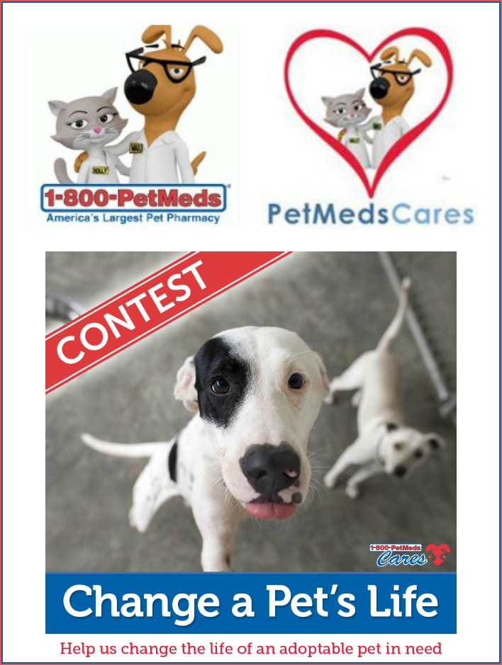 1-800-PetMeds Cares Change A Pet's Life 2017 Contest