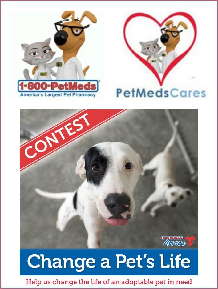 1-800-PetMeds Cares Change A Pet's Life 2017 Contest