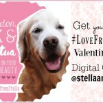 Get Your Dog #LoveFromStella Valentine's Day Digital Card #StellaandChewys