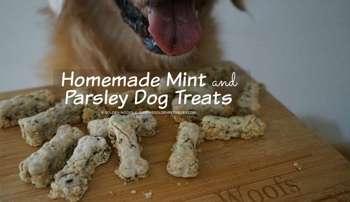 Homemade Mint and Parsley Dog Treats