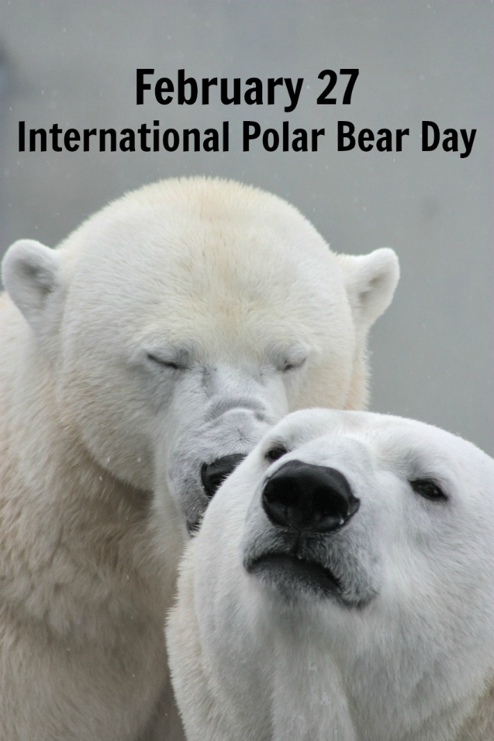 International Polar Bear Day February 27