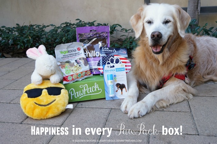 Happiness PawPack subscription box