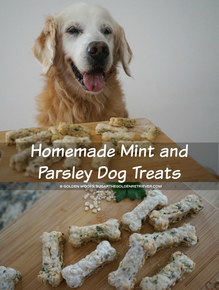 recipe DIY Homemade Mint and Parsley Dog Treats