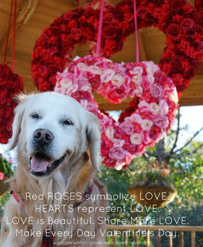 POEM: Share More Love