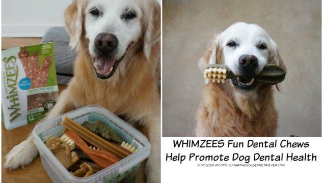 WHIMZEES Fun Dental Chews Help Promote Dog Dental Health
