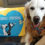 Petco Foundation Love Changes Everything