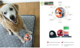 Smart Playful Pet Monitor Pebby on Kickstarter