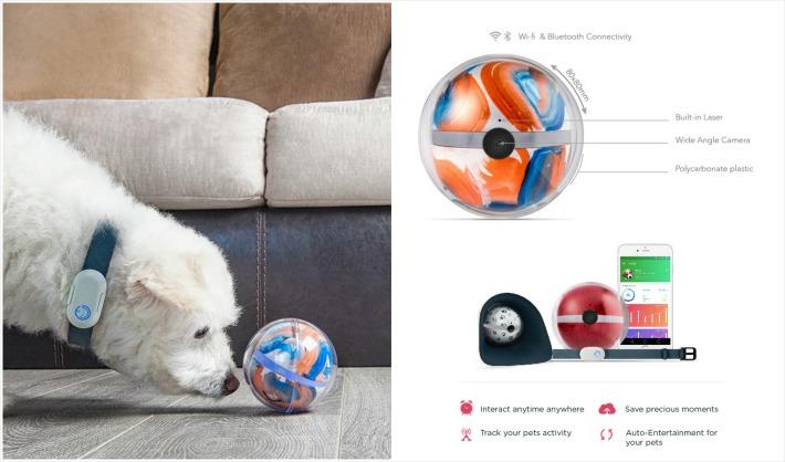 Pebby Smart Playful Pet Monitor Kickstarter