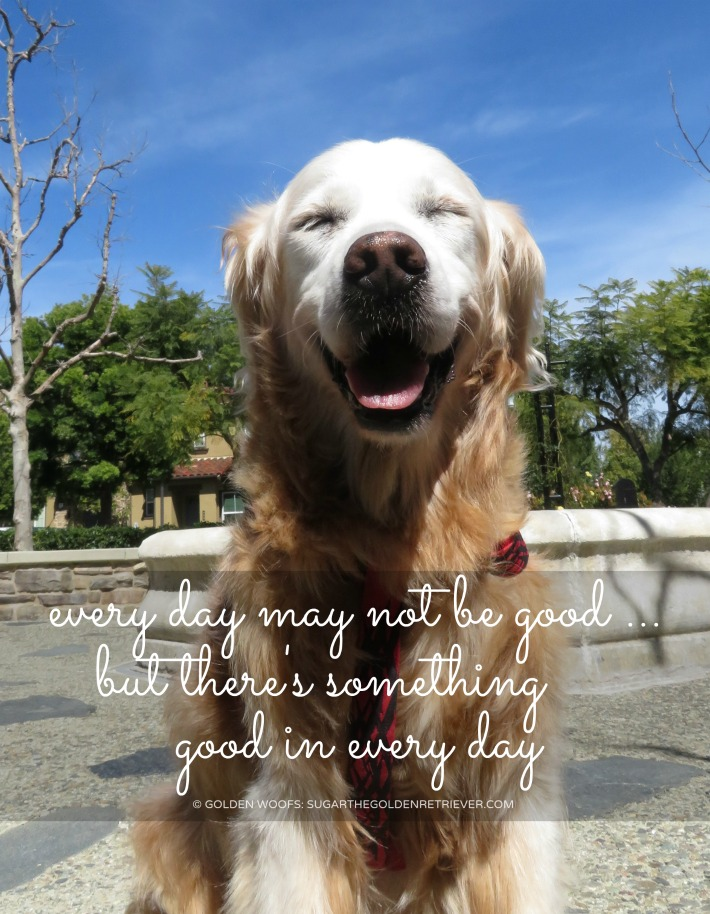 quote Every day may not be good...but there's something good in every day