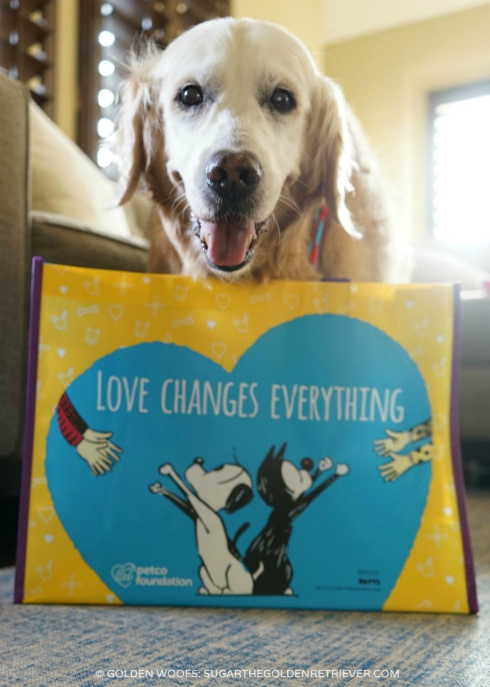 petco love changes everything MUTTS comic strip Patrick McDonnell