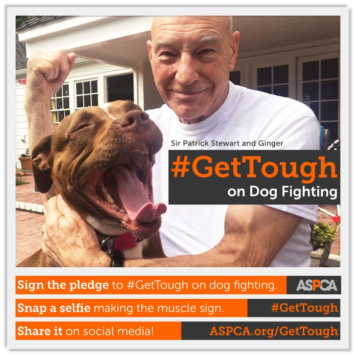 Patrick Stewart ASPCA Get Tough on Dog Fighting