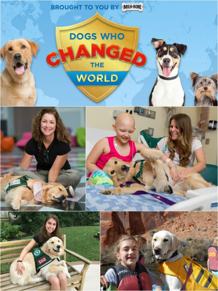 Milk Bone's 2017 dogs who changed the world
