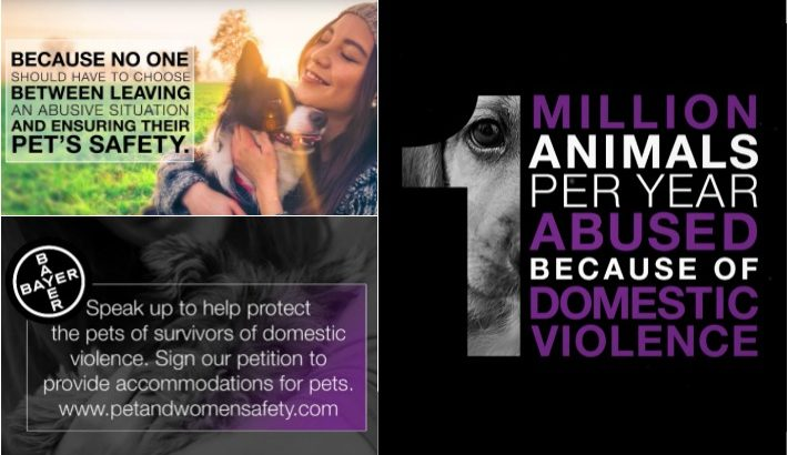 Support Bayer #PAWSAct Survivors of Domestic Violence and Their Pets